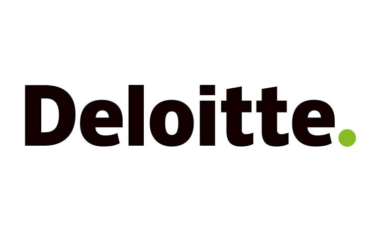 HiNounou is cited in a report of Deloitte